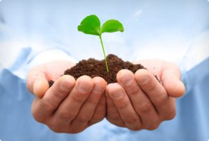 TRSA Environmental Responsibility